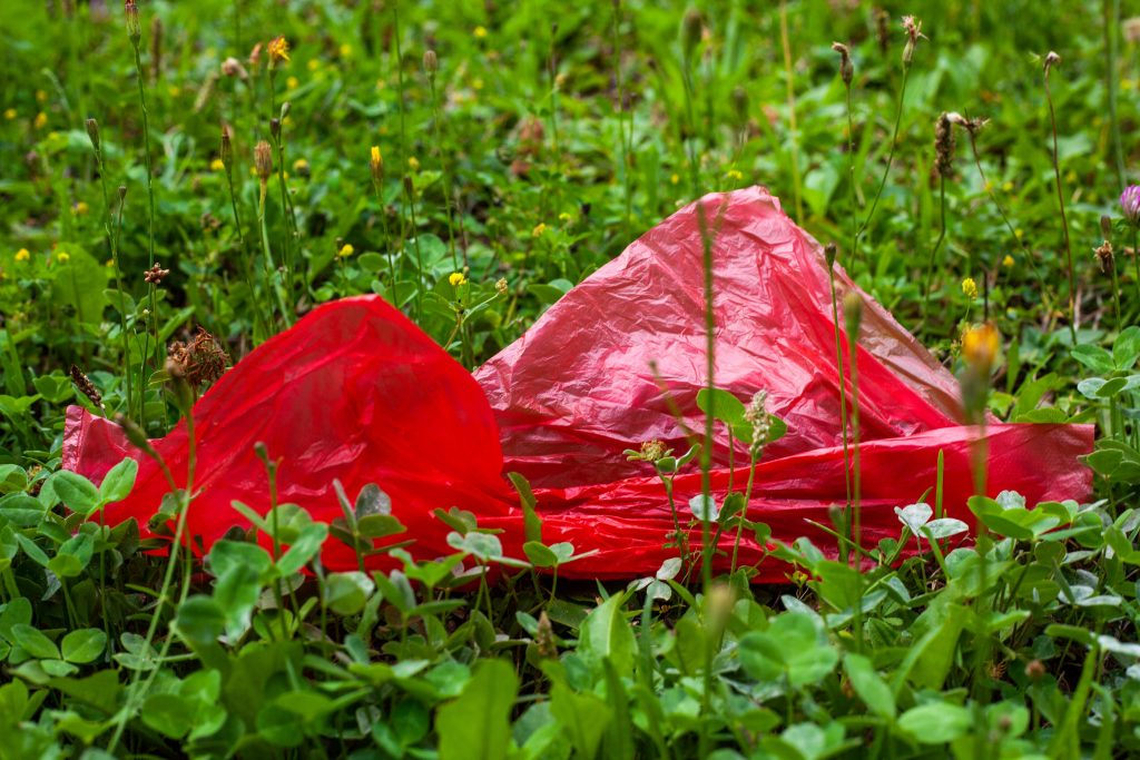 Mehrwegalternative bei Einwegkunststofflebensmittelverpackungen und Einweggetränkebechern VerpackG
